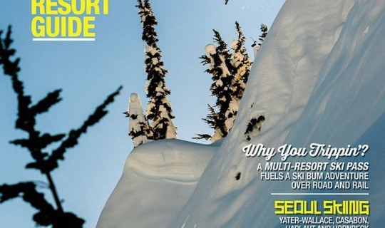 free-skier-cover